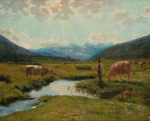 Mucche al pascolo - Ciolina